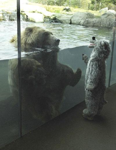 Bear Vs Child