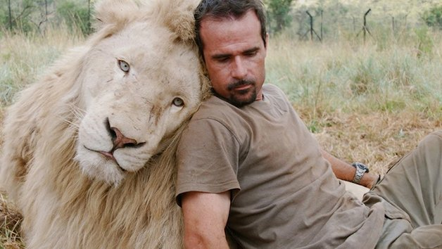 LionWhisperer1