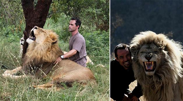 LionWhisperer2