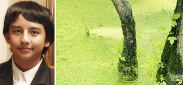 algaepower-ed02