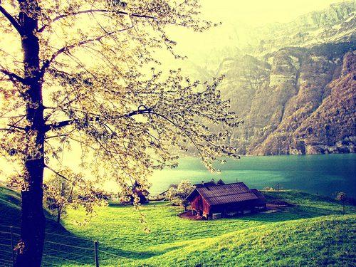 Imagine spring