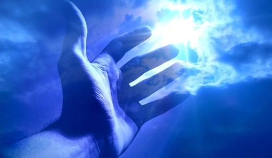 universo natural atendimento serc3a1 curado