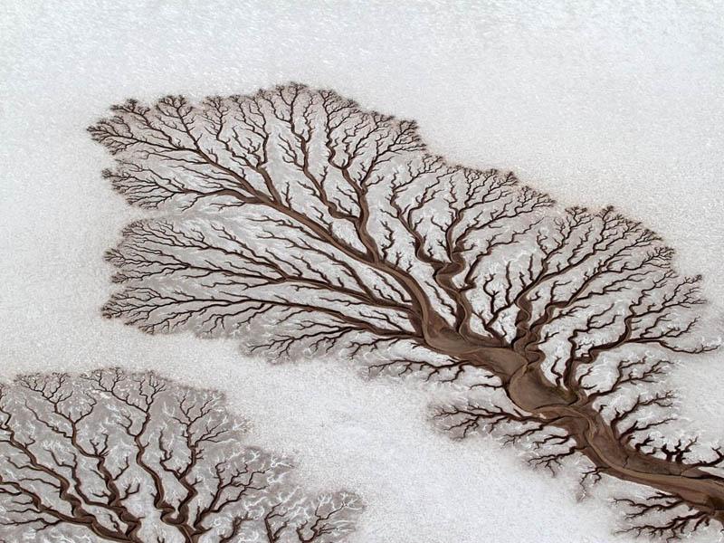 baja-california-desert-dried-out-rivers-salt-flats-mexico-lichtenstein