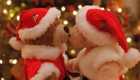 ursinhos de natal