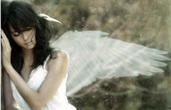 lonely angel tired beautiful 705