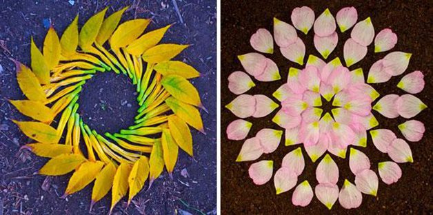 danmala-flower-mandala-kathy-klein-27