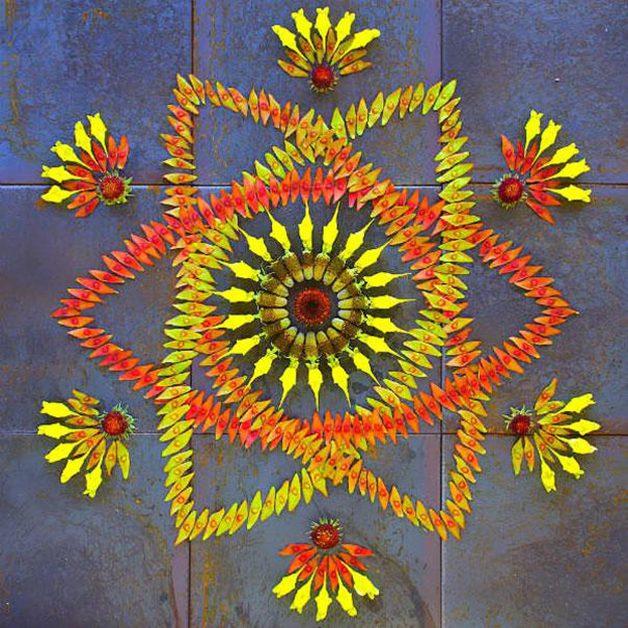danmala-flower-mandala-kathy-klein-36