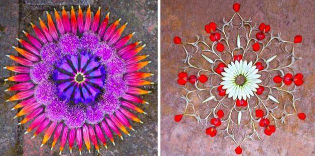 danmala-flower-mandala-kathy-klein-41