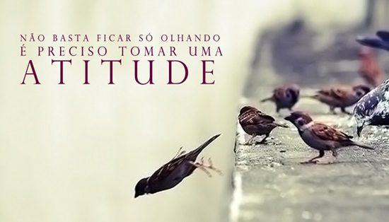 atitude (1)