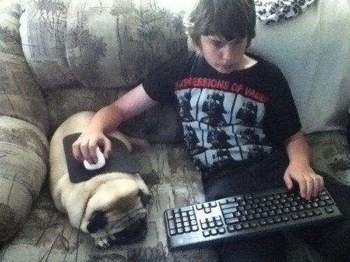 Cachorro que também é um mousepad.