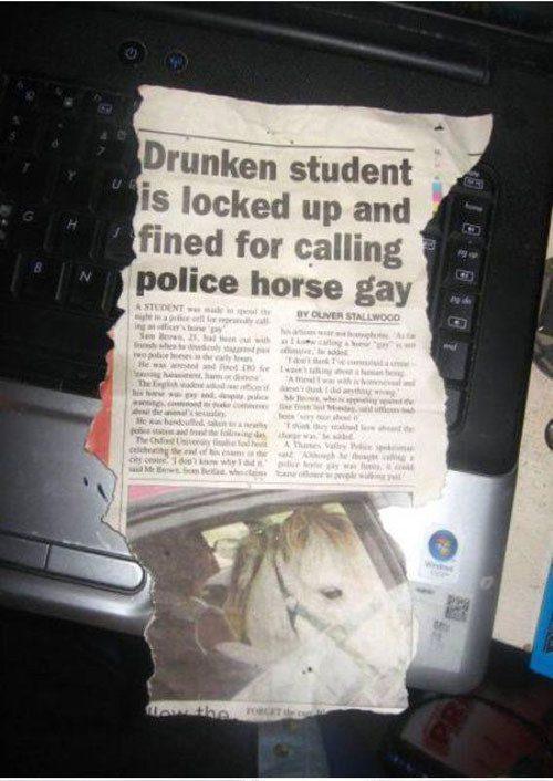 Alguém acabou de aprender uma importante lição sobre tolerância.