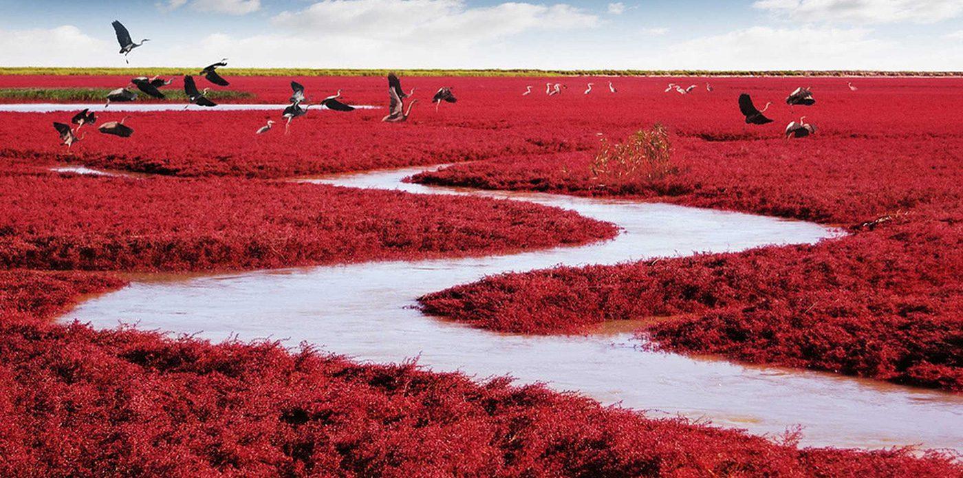 praiavermelhachinacapa