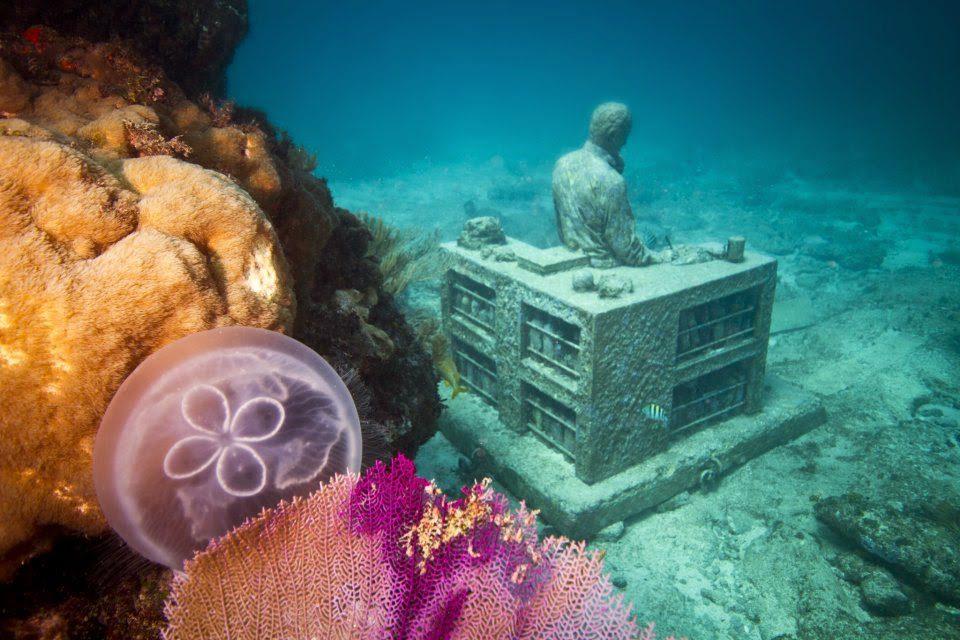 O museu submerso mais incrível do mundo 14