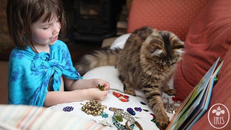 amizade gato terapia 152