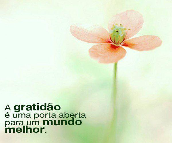 A-gratidão-é-uma-porta-aberta-para-um-mundo-melhor-600x500