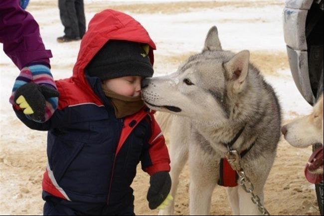 cachorro19