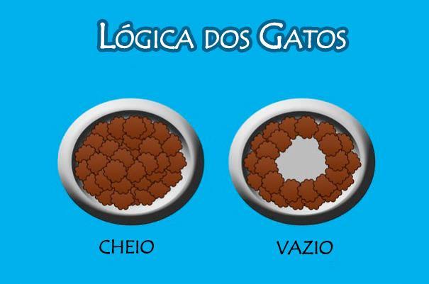 logica-dos-gatos-3