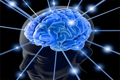 cerebro030212