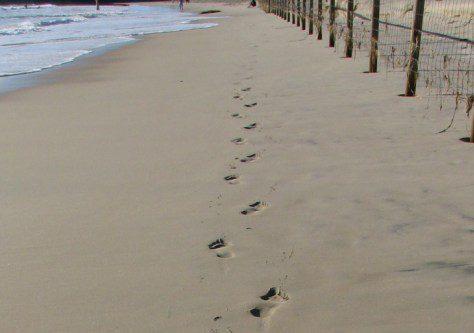 footprint-in-sand-2-e-1-e1393120578222