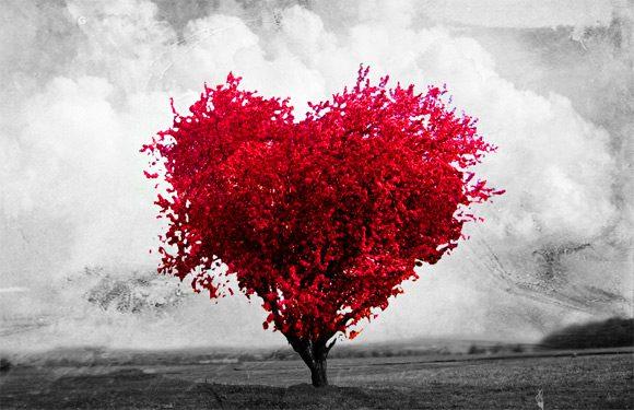 imagens de amor 20