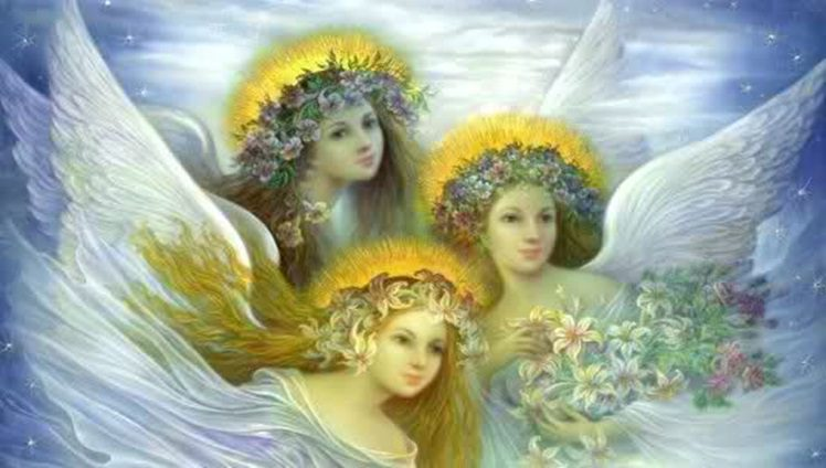 anjosss
