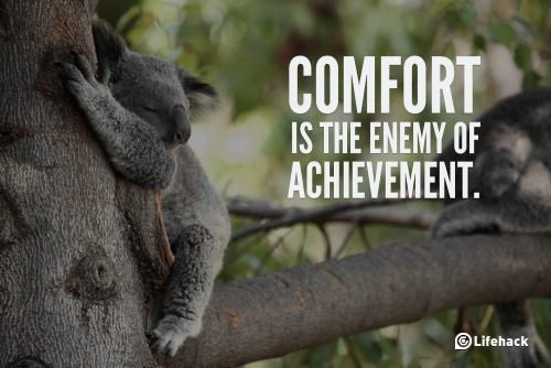 comfort-is-the-enemy-of-achievement