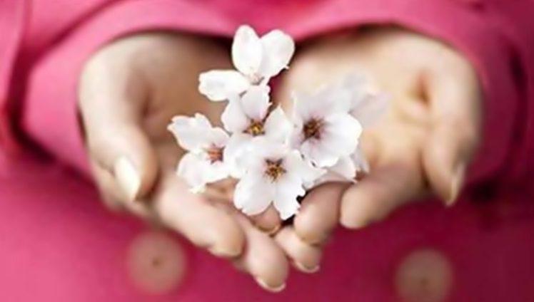 Resultado de imagem para segredo de ser grato
