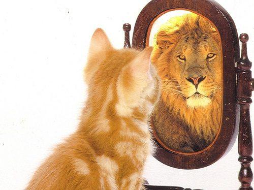 Autoestima (1)