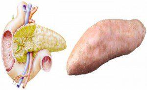 a aparência dos alimentos é igual aos órgãos6