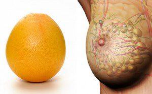 a aparência dos alimentos é igual aos órgãos8