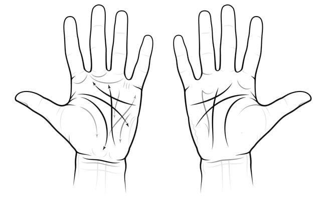as linhas na palma da sua mão podem revelar segredos