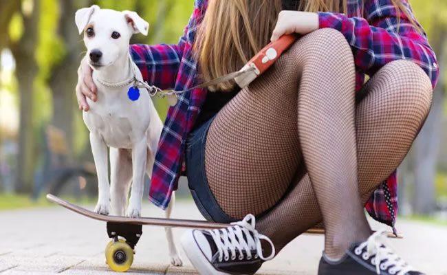 6 coisas que os cães podem nos ensinar sobre