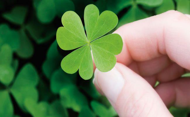 divagações sobre a sorte