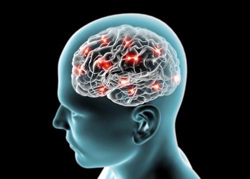 Efeitos-no-cerebro-500x357-500x357