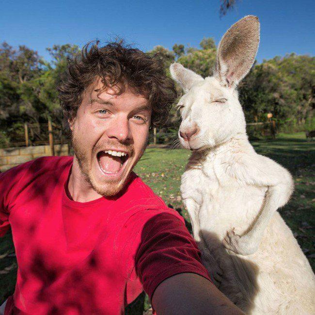 selfie-com-animais-2