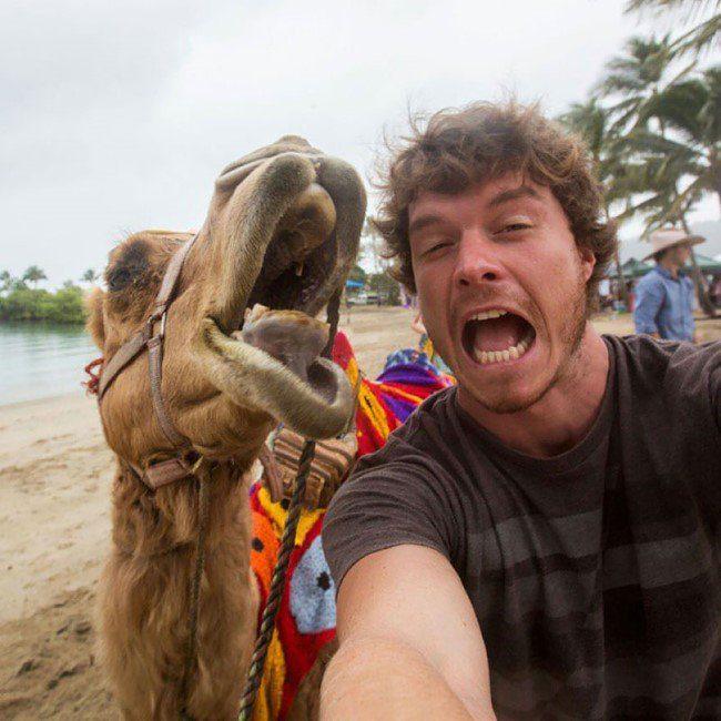 selfie-com-animais-3