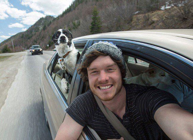 selfie-com-animais-7