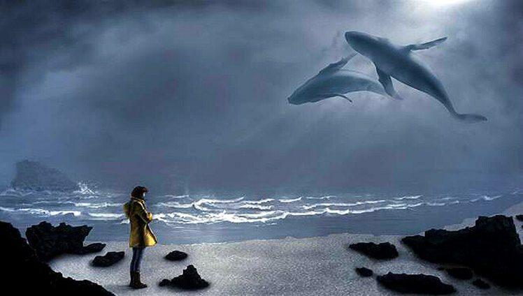 ceu baleias
