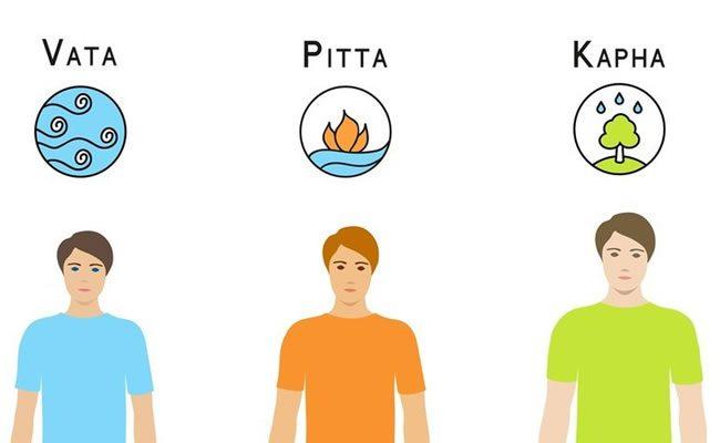 segundo a tradição ayurvédica existem 3 tipos de