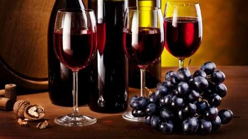 vinos-500x281