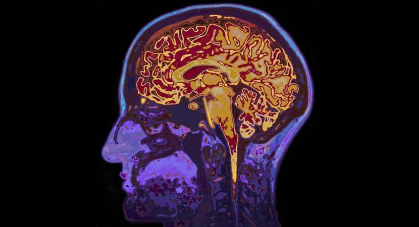 4 simples maneiras de aumentar a serotonina em seu cérebro