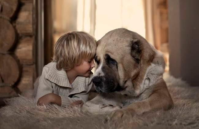 até que você ame um animal3