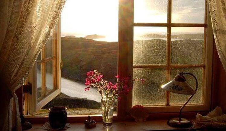 sozinha janela