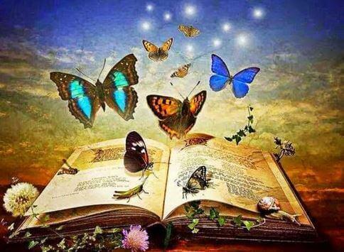 livro-cheio-de-borboletas