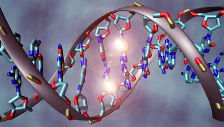 epigenetica-capa