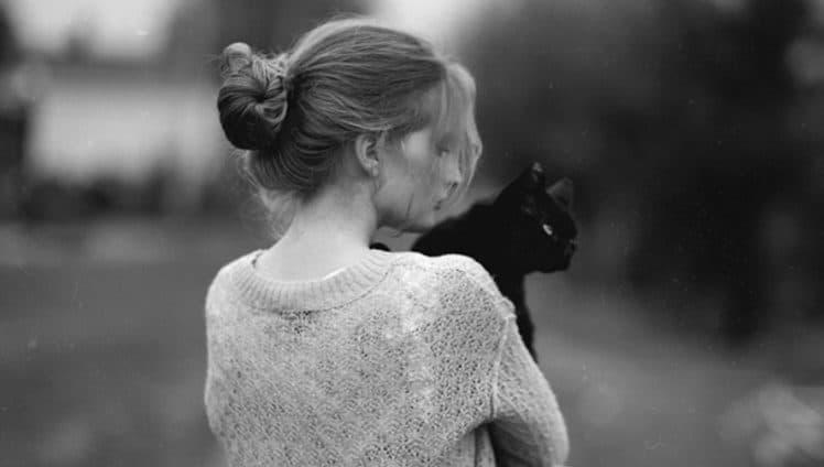 dono-de-gatos
