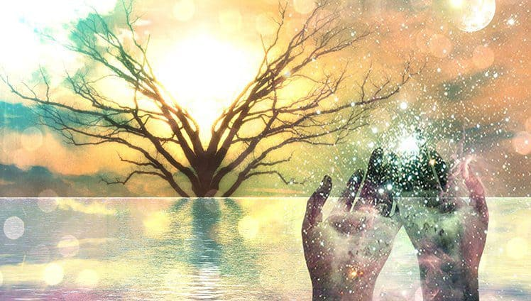 Espiritismo e Ecologia Caminho para a Sustentabilidade Ético Moral 1