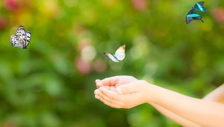 Quando a vida dá uma virada é pra gente tomar o rumo certo. O abismo nos ensina a voar.