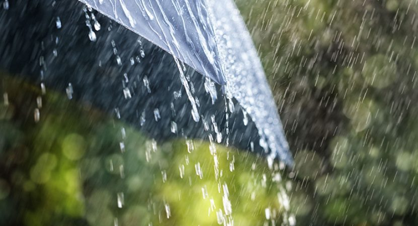 Resultado de imagem para chuva