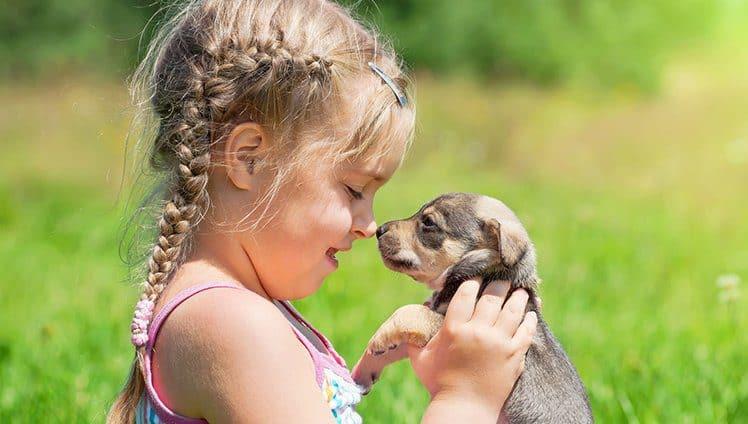 Nossa ligação com um animal de estimação